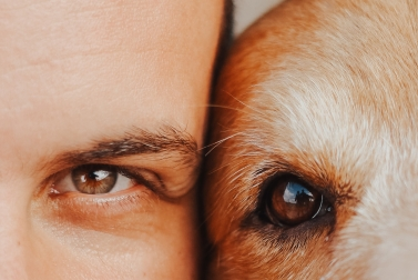 close-up-photo-of-man-and-dog-3452005